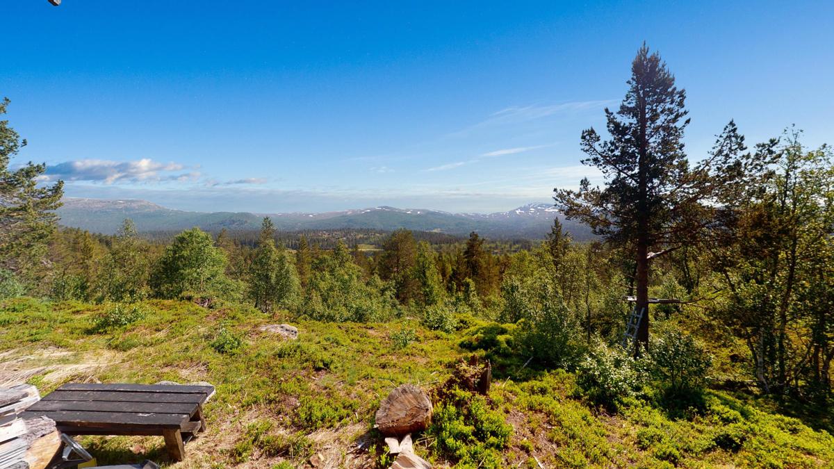 Fantastisk utsikt over fjellene i øst.