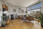 Deliakt og lun stue med peisovn og store vinduer (utvendig solskjerming)
