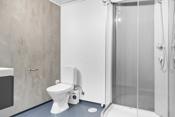 Bad modernisert i 2020 med nye vegger, innredning og garnityr, rør m.m. Gulvet er ikke skiftet. Baderomsinnredning. Gulvfestet wc. Dusjkabinett.