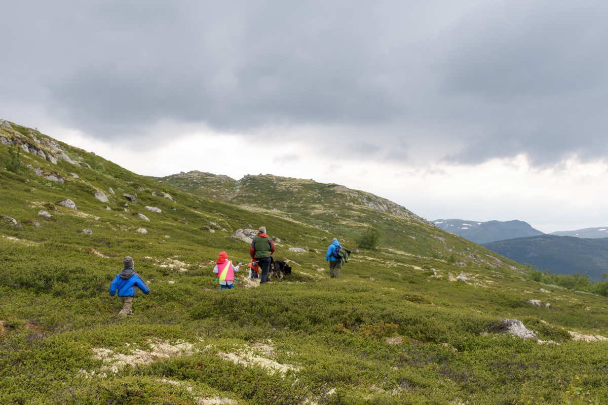 Uante muligheter sommer som vinter. Foto: Trond Kjønås
