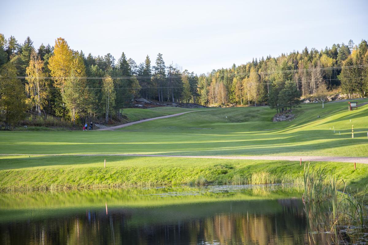 18 hulls golfbane i nærområdet.