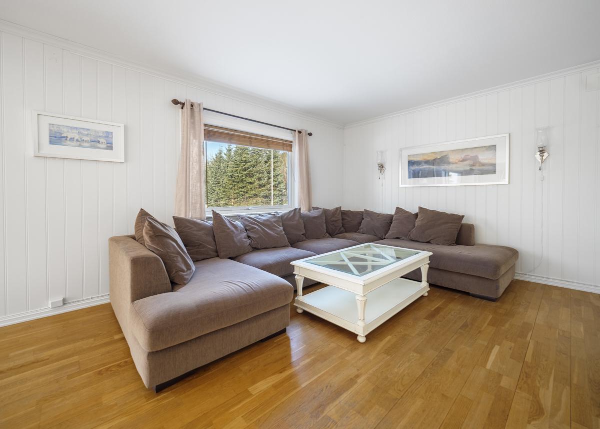 Sofa/tv-kroken i stuen.