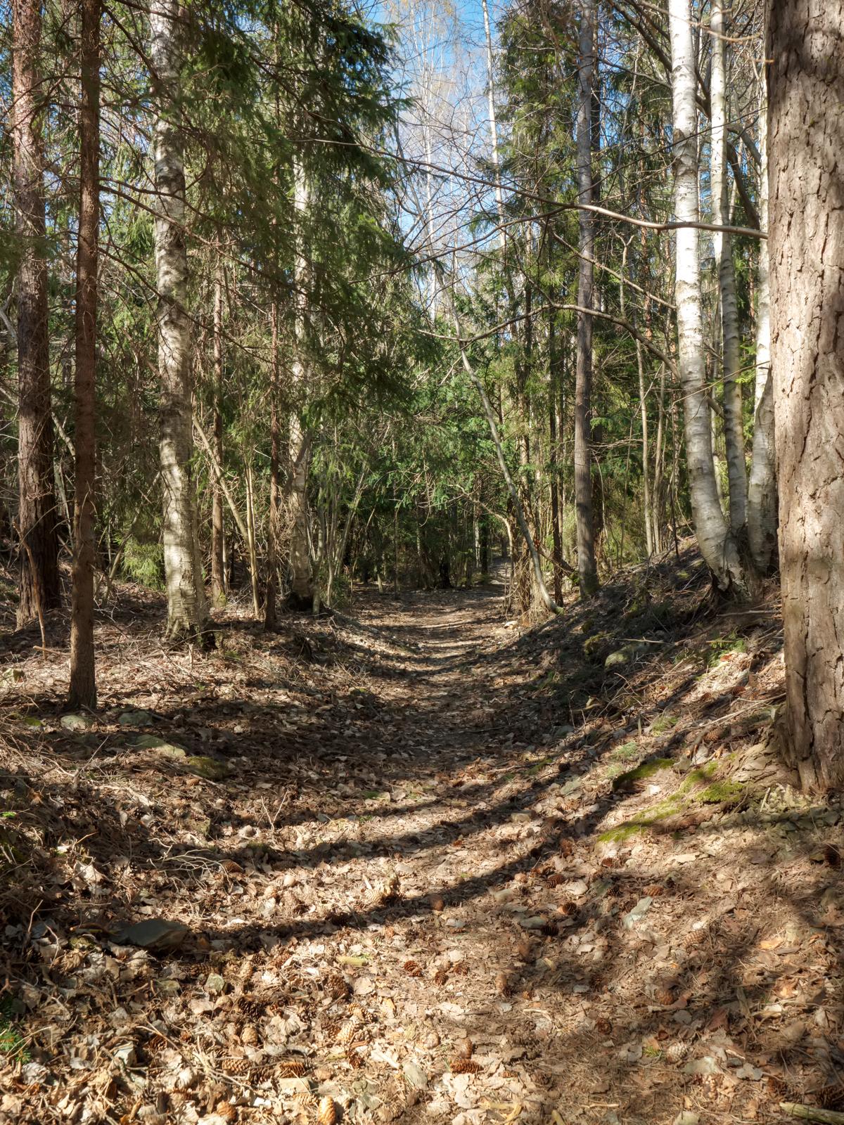 Ubegrenset mulighet for turer i nærområdet, enten du velger Kyststien eller en topptur til Haraldsfjellet