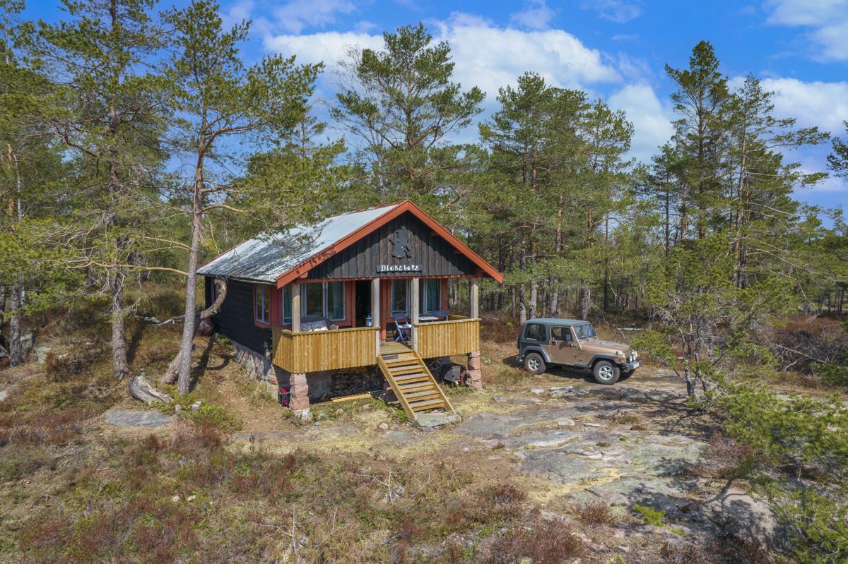 Velkommen til Haraldsfjellet 3 - Hytte i skogen - På fjellet - Ved sjøen!
