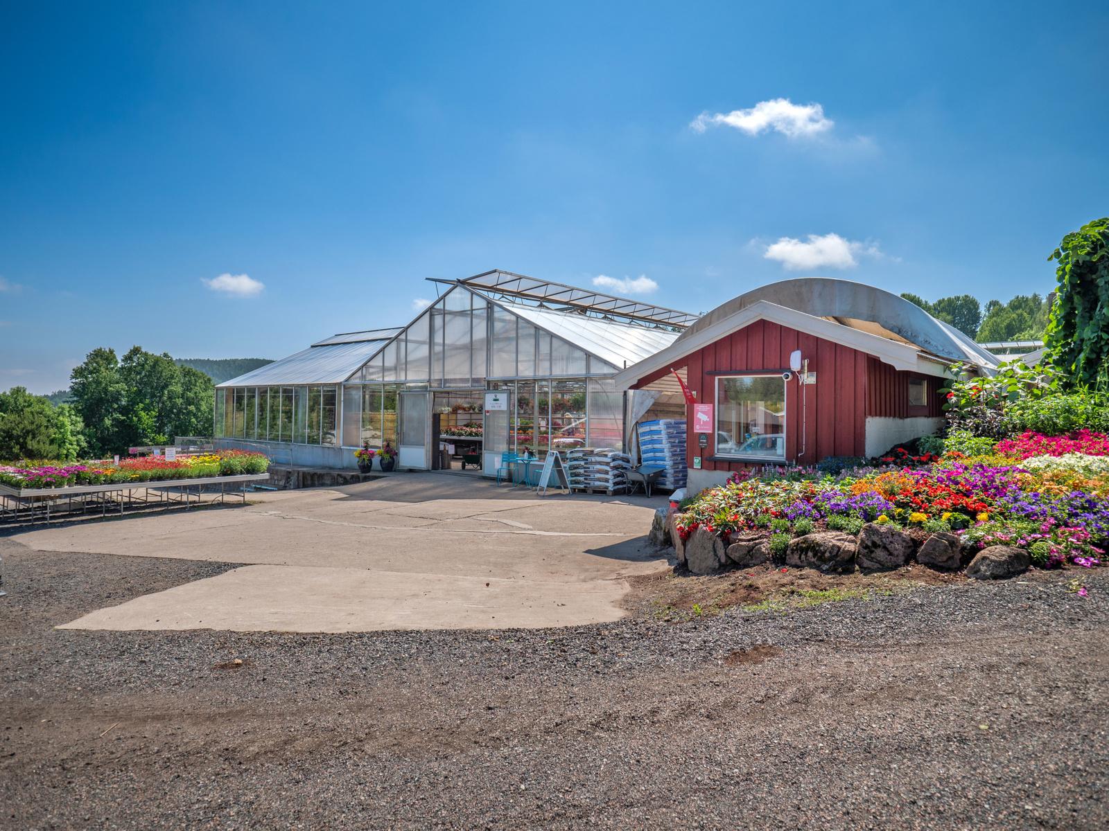 Ravnsborg gartneri ligger på veien inn til hytta og det anbefales en stopp her