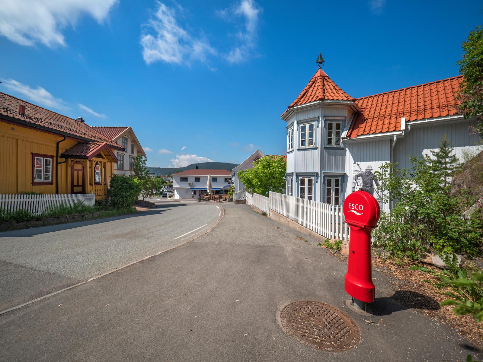Fra hytta er det en hyggelig gåtur til sjarmerende Holmsbu sentrum
