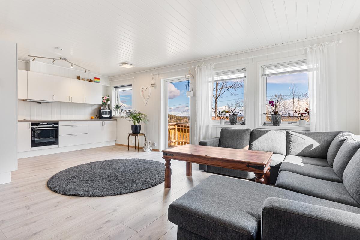 Stue og kjøkken med utgang til terrasse, store vindusflater gir mye lys inn.