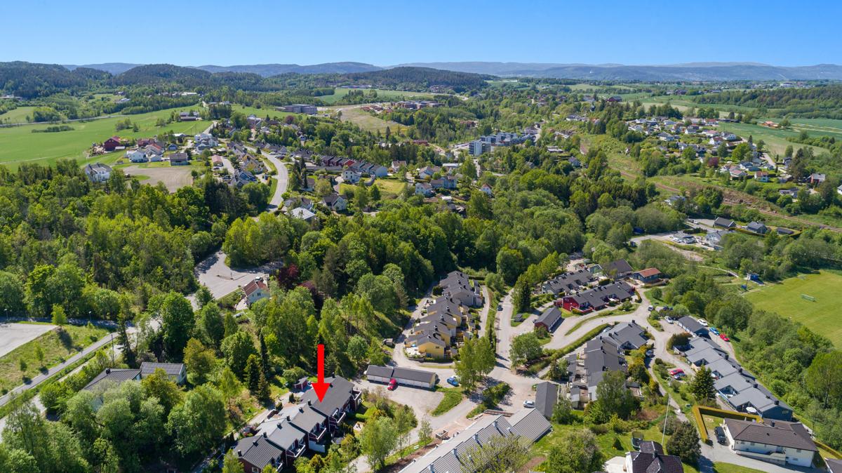 Høydefoto av området