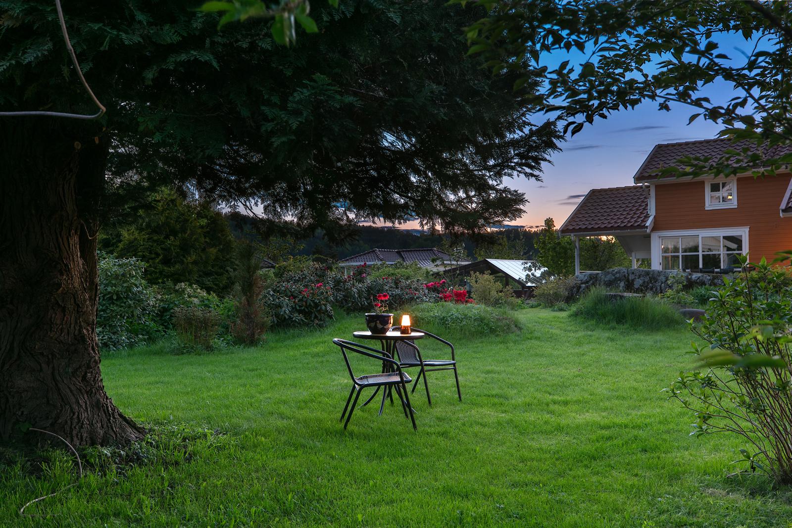 Kveldsstemning fra hage