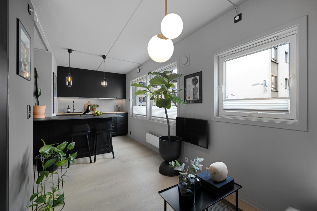 Velkommen til Amtmann Meinichs gate 17 og denne toppmoderne 1(2)-roms leiligheten.